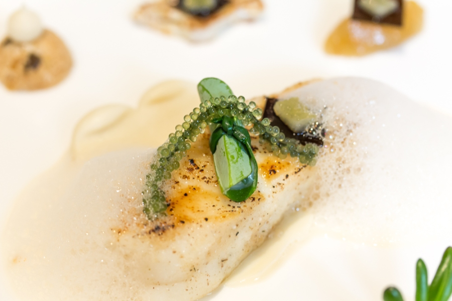 Breton Turbot: 2x Cauliflower / Candied Kombu / Japanese Citron / Umami Boiling