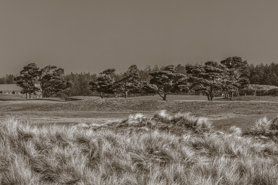 Bandon Dunes (56 of 80)