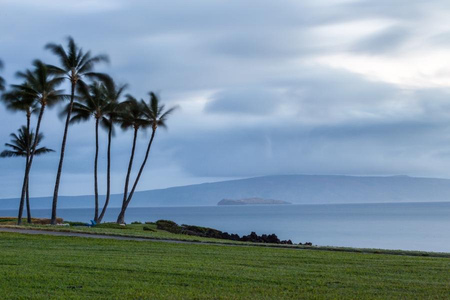 Maui-15